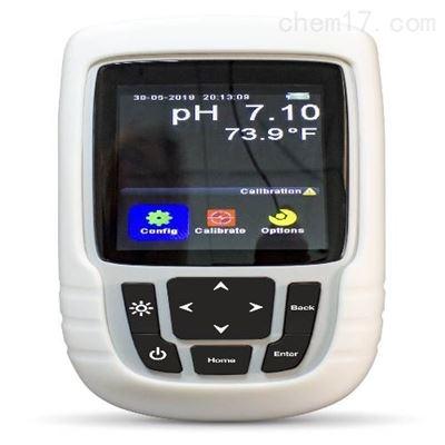 24301帶記錄手持便攜式PH計