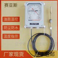 温度指示控制器BWY--802(TH)