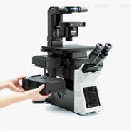 奥林巴斯IX53倒置生物显微镜供货商