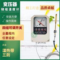 变压器绕组温控器测试仪BWR-04系列