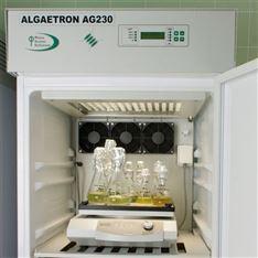 藻类光照培养箱