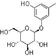 苔黑酚葡萄糖苷21082-33-7