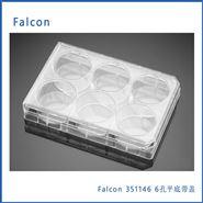 Falcon 6孔平底带盖表面未处理微孔板,50/箱