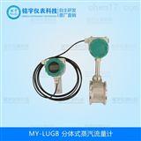 MY-LUG分体式蒸汽流量计专业生产厂家
