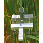 DD-S小型直徑生長測量傳感器