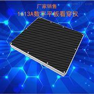 上海真晶1613XCA平板探测仪