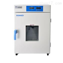 HGPF-9052跃进干燥箱