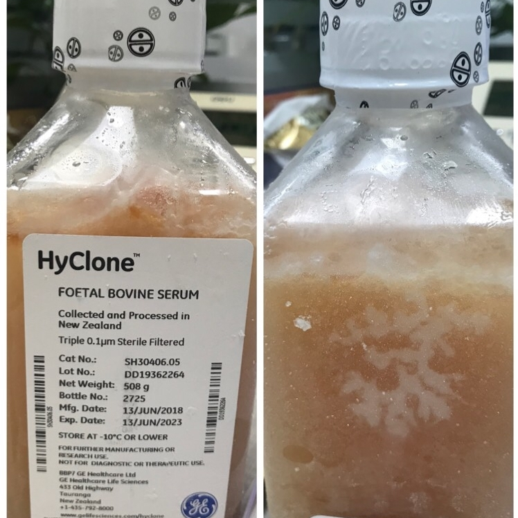 Hyclone新西兰胎牛血清SH30406.05