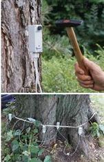 ARBOTOM 声波成像树木探测仪