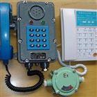 北京脈沖/雙音頻電話機