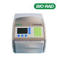 美国进口bio-rad伯乐蛋白转印仪1704150