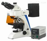 正置熒光顯微鏡