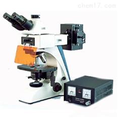 BK-FL2荧光显微镜