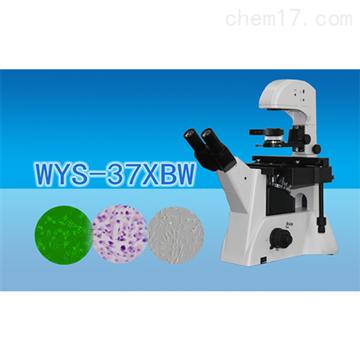 WYS-37XBW三目倒置生物显微镜