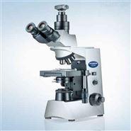 奧林巴斯Olympus顯微鏡CX31的結構圖解