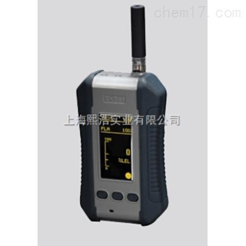 便携式气体探测器/可燃气体报警器