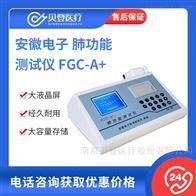 V255396安徽电子肺功能测试仪 FGCA+