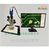 体视视频显微镜