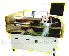 EX2001SAR膜缺陷检测系统