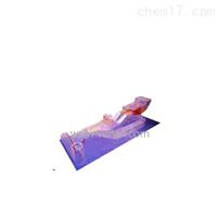 動力轉向器解剖模型
