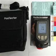 PosiTector6000美国DeFelsko狄夫斯高涂层测厚仪