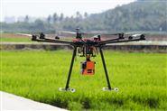 Ecodrone®UAS-8高光谱无人机遥感平台