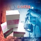 48T/96T人β内酰胺酶抑制剂(BLI)ELISA Kit
