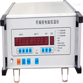ZRX-17473可编程电脑控温仪