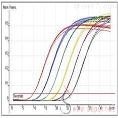 半定量RT-PCR實驗服務