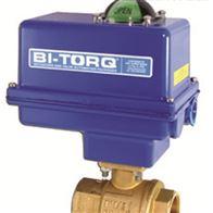 IP-2P-02-100-E-A-4BI-TORQ电动执行器球阀BI-TORQ不锈钢球阀