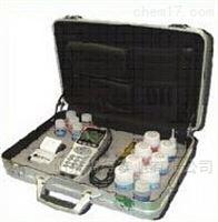 DY-2501B便携式氯离子含量测试仪