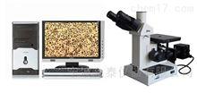 4XD-FX金相自动分析显微镜