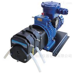 FG600S-W3防爆电机型蠕动泵