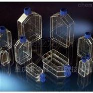 Nunc EasYFlasks 细胞培养瓶透气/密闭 耗材