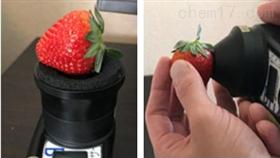 草莓無損糖度計