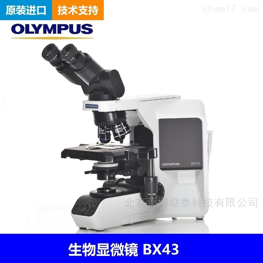 奥林巴斯BX43显微镜