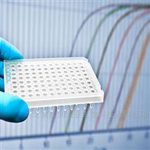 2X预混实时荧光定量PCR反应体系