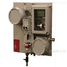 在线H2S氧气气体分析仪