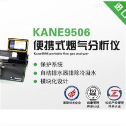 路博环保KANE9506KANE9506 便携式烟气分析仪气体检测监测