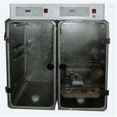CJ-DO2240氧环境动物试验箱