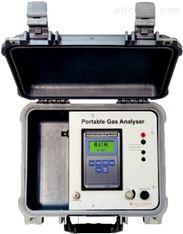 便携式氢气分析仪