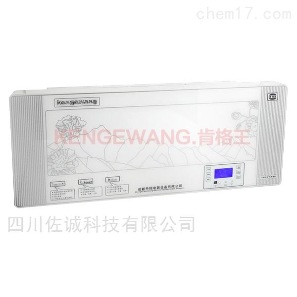 CZX-B100型壁挂式臭氧紫外线空气消毒机
