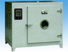 101A系列电热鼓风干燥箱