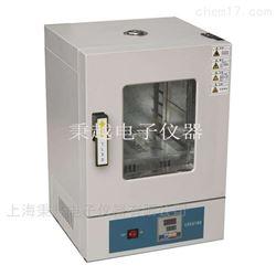 上海电热鼓风干燥箱