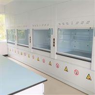 YJ-TFG03海南物理实验室通风橱PP净气型通风柜