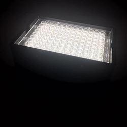 细胞光毒性光源照射机_氙灯光源_紫外光源