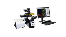 K1-Fluo ABM激光荧光共聚焦显微镜