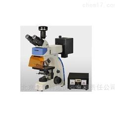 荧光显微镜 高眼点平场目镜