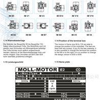 意大利MOLL-MOTOR电机Y3PE-132MB6B5