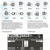 意大利MOLL-MOTOR电动机Y3PE-100LA4B5原装
